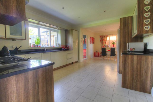 Thumbnail Detached house for sale in Tulip Close, Hartlepool