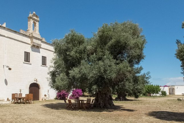 Thumbnail Country house for sale in Contrada Palombara, Ostuni, Brindisi, Puglia, Italy