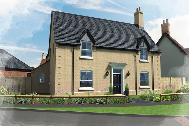 Thumbnail Detached house for sale in Hill Place, Brington, Huntingdon