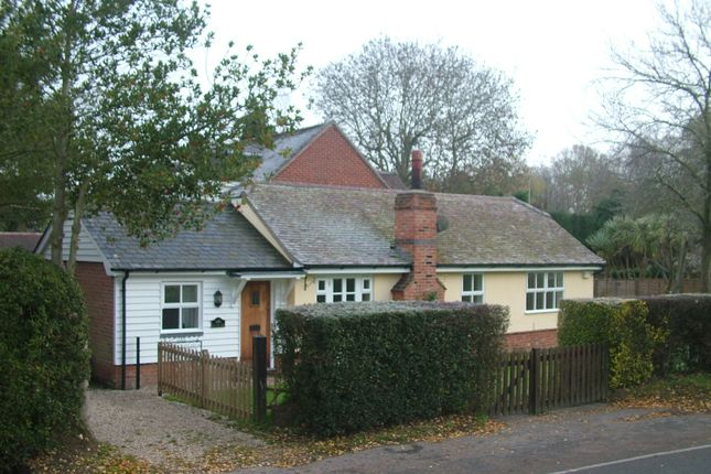 Thumbnail Bungalow to rent in Mill Green Road, Mill Green, Fryerning, Ingatestone, Essex