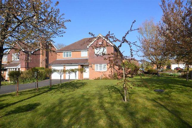 Thumbnail Detached house to rent in Mansion House Close, Biddenden, Kent