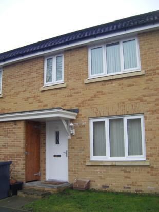 Thumbnail Semi-detached house to rent in Rudman Park, Chippenham