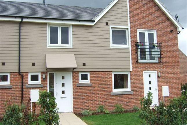 Thumbnail Terraced house to rent in Appleton Drive, Basingstoke