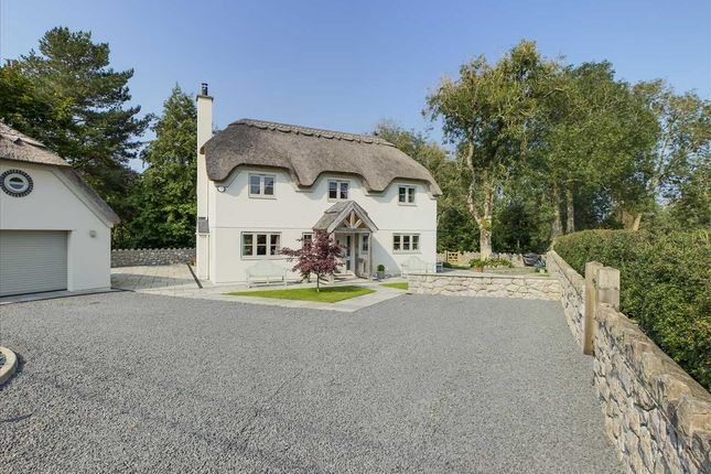 Thumbnail Detached house for sale in Ty To Gwellt, Bwlch, Tyn Y Gongl