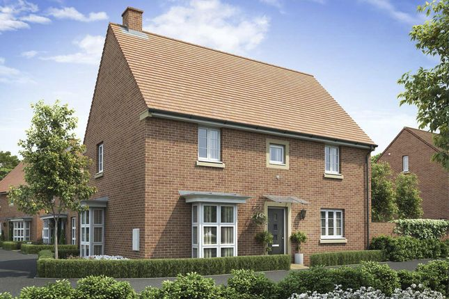 "Thumbnail Detached house for sale in ""Cornell"" at Appleton Drive, Basingstoke"