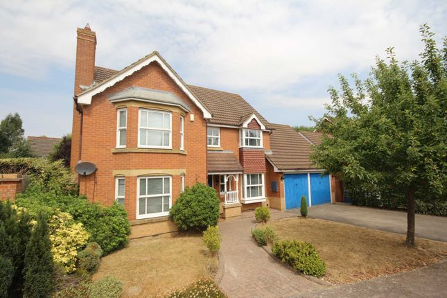 Thumbnail Detached house to rent in Blamire Drive, Binfield, Bracknell