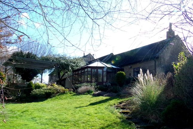 Thumbnail Semi-detached house for sale in Tritlington, Morpeth
