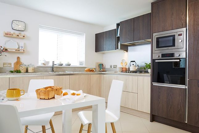 """3 bedroom semi-detached house for sale in """"The Cambridge Semi"""" at Blantyre, Glasgow"""