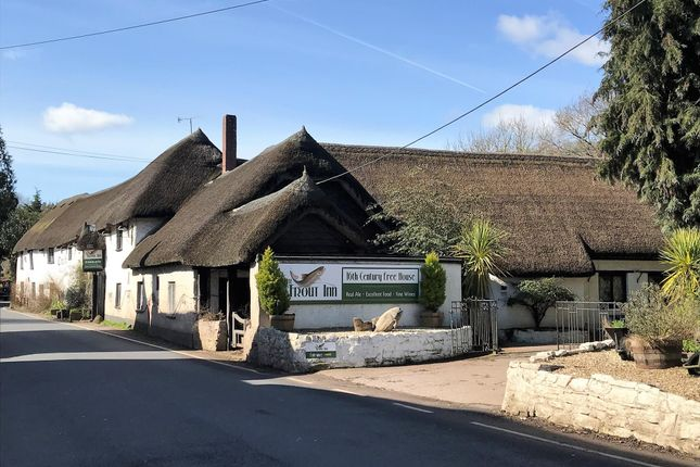 Thumbnail Pub/bar for sale in Substantial 16th Century Thatched Inn EX16, Bickleigh, Devon