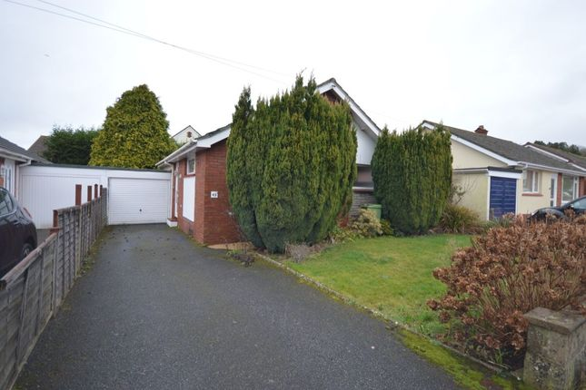 Thumbnail Bungalow to rent in Meadow Close, Kingskerswell, Newton Abbot