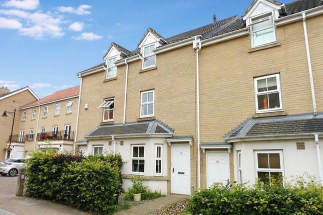 Thumbnail Property to rent in Kenneth Mckee Plain, Norwich