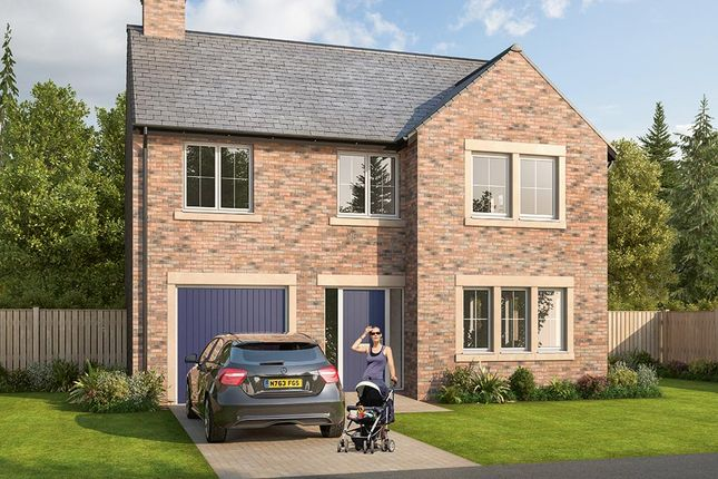 "Thumbnail Detached house for sale in ""The Norbury"" at Glenarm Road, Wynyard Business Park, Wynyard, Billingham"