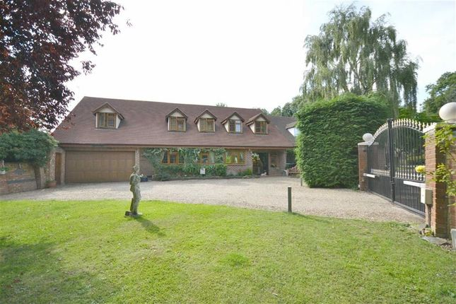 Thumbnail Detached house to rent in Musgrave Close, Hadley Wood, Hertfordshire