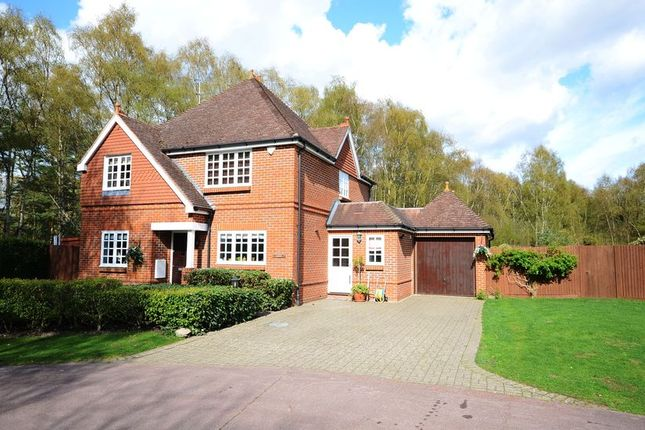 Thumbnail Detached house to rent in Kings Ride, Ascot