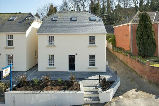 Thumbnail Detached house for sale in Minnis Lane, River, Dover