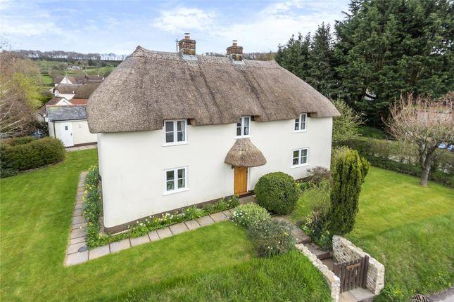 Thumbnail Detached house for sale in Rawridge, Honiton, Devon