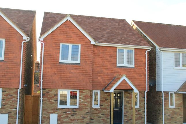 Thumbnail Detached house to rent in Orchard Way, Westfield, East Sussex