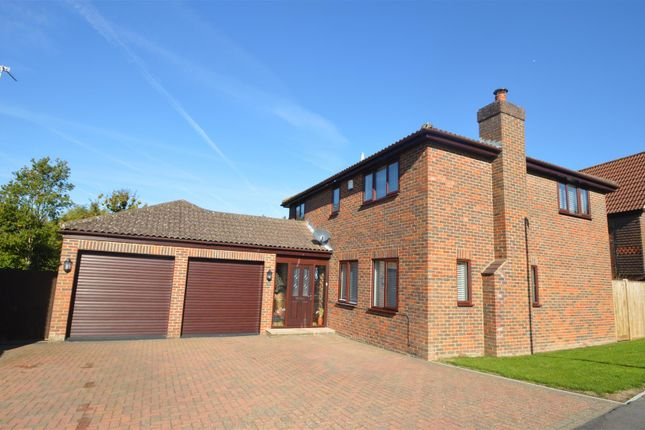 Thumbnail Detached house for sale in Cowdray Park Road, Bexhill-On-Sea