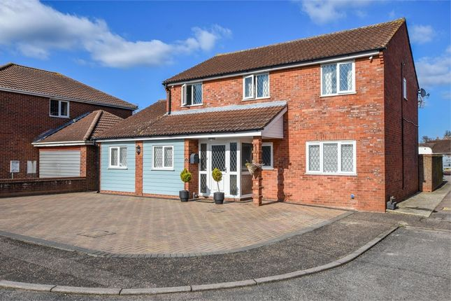 Thumbnail Detached house for sale in Cornflower Close, Stanway, Colchester, Essex