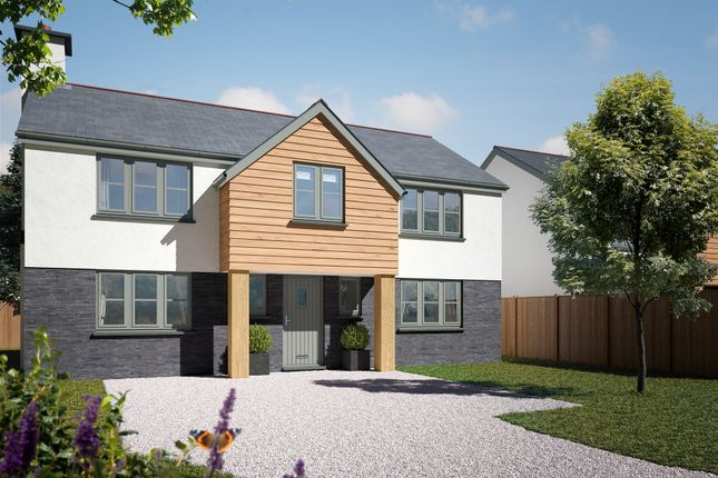 Thumbnail Detached house for sale in Trelights, Nr Port Isaac