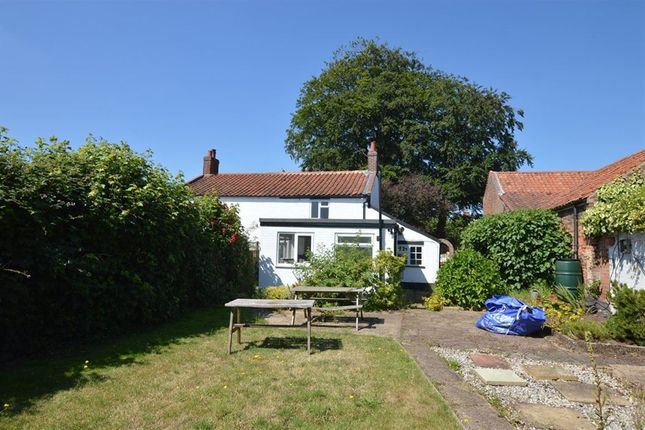 Thumbnail Cottage to rent in Middle Hill, Reedham, Norwich