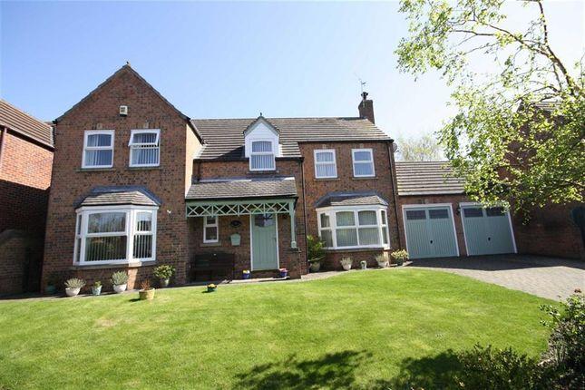 Thumbnail Detached house for sale in The Shetlands, Retford, Nottinghamshire