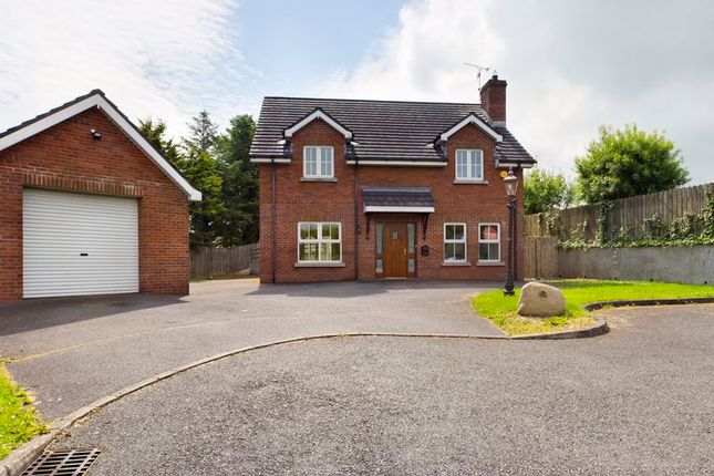 Thumbnail Detached house for sale in 23B Dunbrae, Chancellors Road, Newry