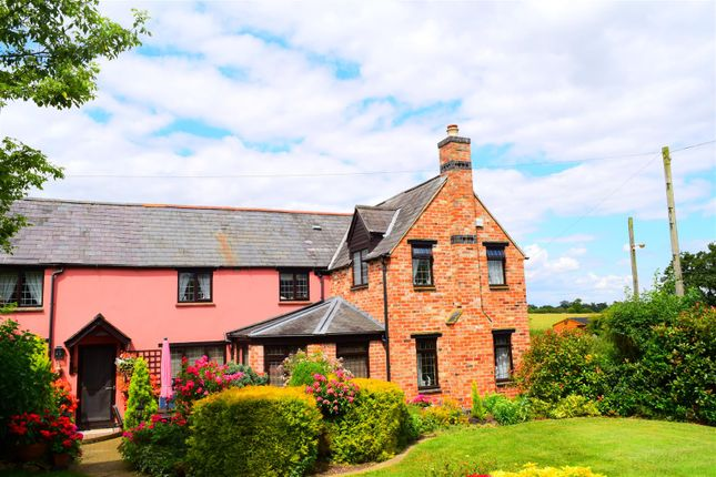 Thumbnail Semi-detached house for sale in The Old Pink Cottage, Folly Lane, Little Brington