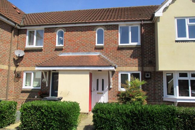 Thumbnail Detached house to rent in Pochard Way, Great Notley, Braintree