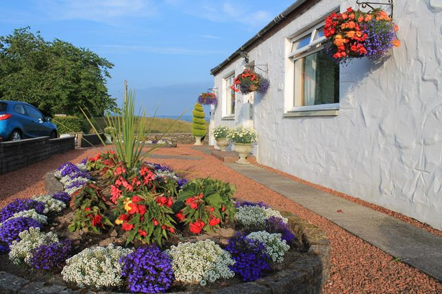 Thumbnail Cottage for sale in Conchieton, Kirkcudbright