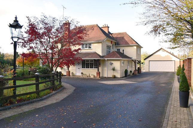 Thumbnail Equestrian property for sale in Hightown Hill, Ringwood