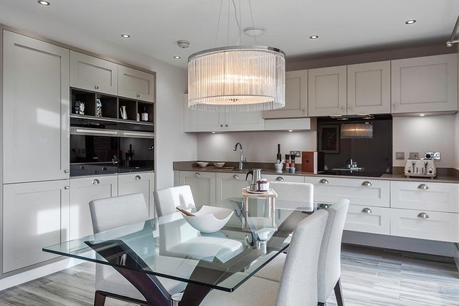 "4 bedroom detached house for sale in ""The Rosebury"" at Wellfield Road North, Wingate"