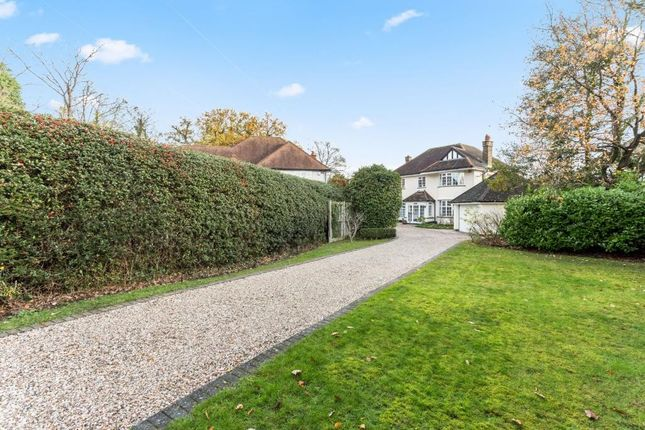 Thumbnail Detached house for sale in Crescent Drive, Shenfield, Brentwood, Essex