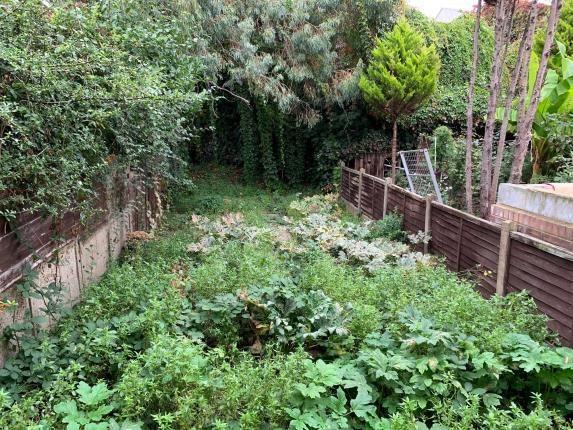 Garden of Blenheim Road, London E17