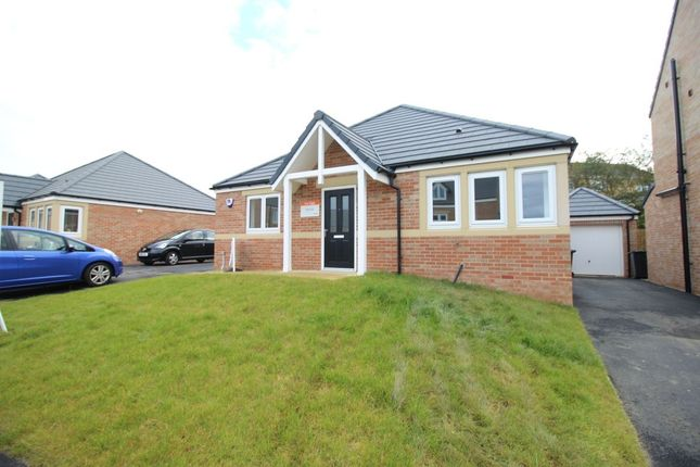Thumbnail Bungalow for sale in Evergreen Way, Marton-In-Cleveland, Middlesbrough