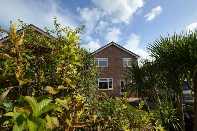 Thumbnail Detached house for sale in Huntham Close, Stoke St. Gregory, Taunton, Somerset