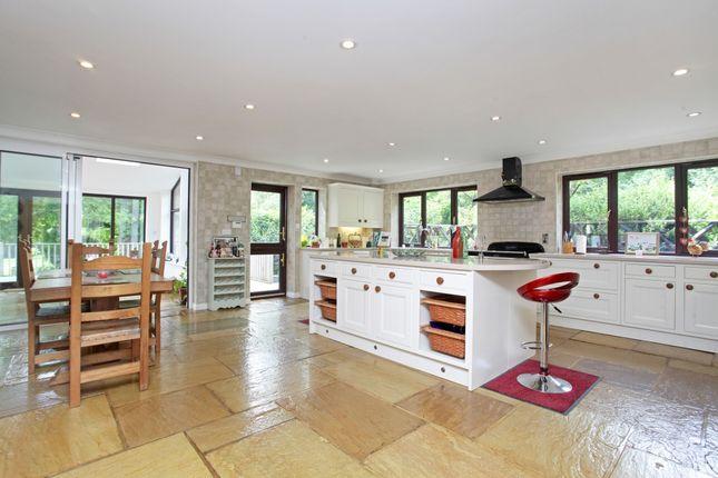 Thumbnail Detached house to rent in Durfold Wood, Plaistow, Billingshurst
