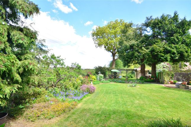 Garden of Lingfield, Surrey RH7