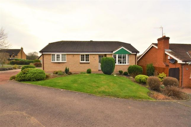 Thumbnail Detached bungalow for sale in Swanage Close, Middlesbrough