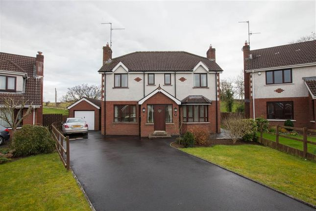 Thumbnail Detached house for sale in 65, Heron Wood, Dromore