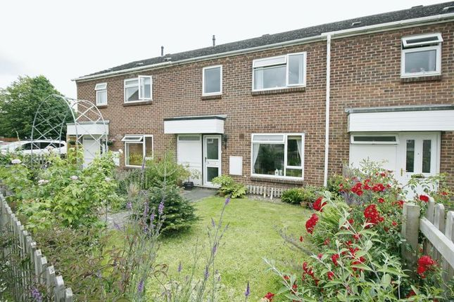 Thumbnail Terraced house for sale in Windmill Road, Blandford Forum