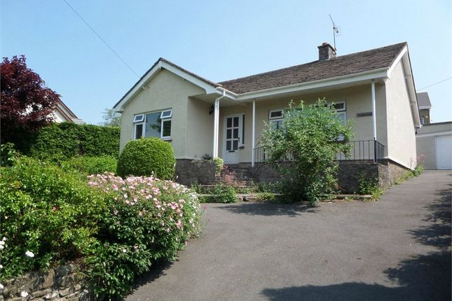 Thumbnail Detached bungalow to rent in Rest A Wyle, Devauden, Chepstow, Monmouthshire
