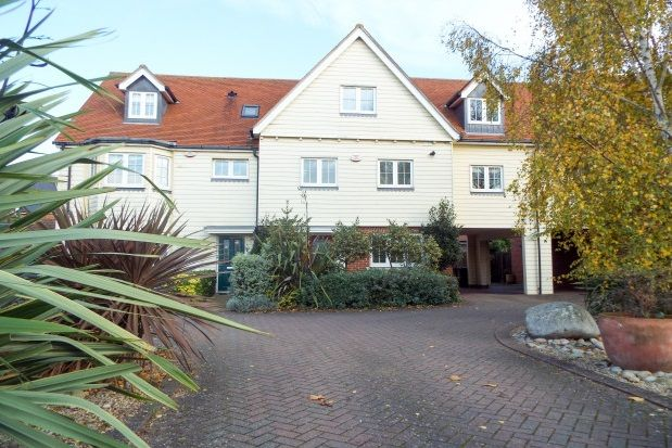 Thumbnail Property to rent in Winstree Road, Stanway, Colchester
