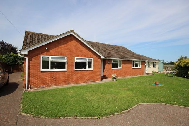 Thumbnail Detached bungalow for sale in Romany Close, Rollesby, Great Yarmouth