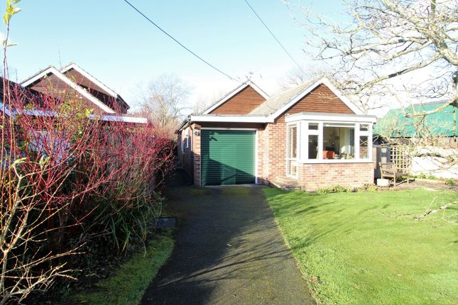 Thumbnail Detached bungalow for sale in Ramsdean Road, Stroud, Petersfield, Hampshire