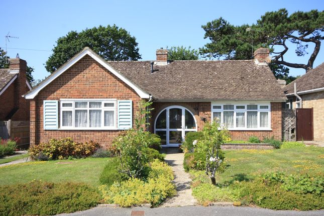 Thumbnail 3 bed detached bungalow for sale in Shipley Lane, Bexhill On Sea