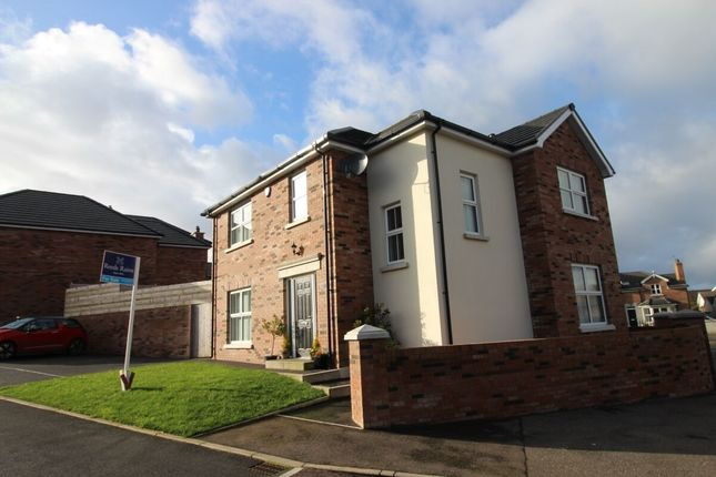 Thumbnail Detached house for sale in Chestnut Lodge, Drumbo, Lisburn