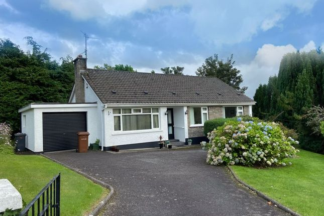 Thumbnail Detached bungalow for sale in Warren Hill, Newry