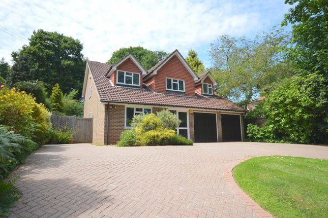 Thumbnail Detached house to rent in Bears Den, Kingswood, Tadworth
