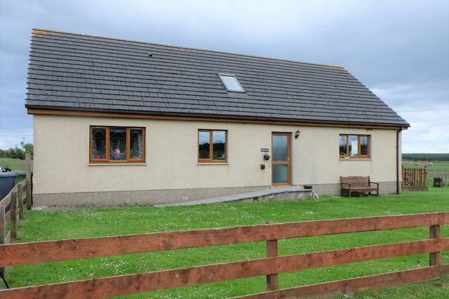 Thumbnail Detached house for sale in Howe Cottages, Lyth, Wick